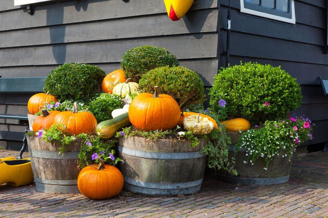 jesienny_balkon_1031826.jpg